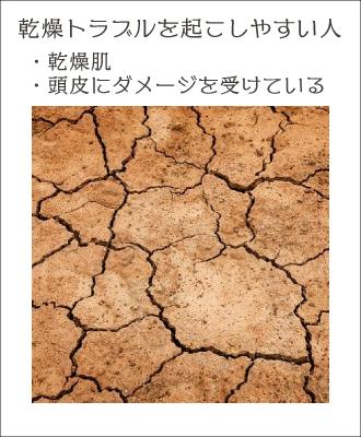 乾燥肌・頭皮ダメージがある人は頭皮の乾燥トラブルがでやすい