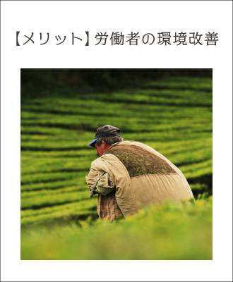 メリット4.生産者の労働環境を守る(不正摂取・児童労働禁止)