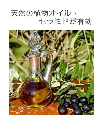 乾燥肌に効果的なのはアルガンオイルなどの植物オイル、セラミド