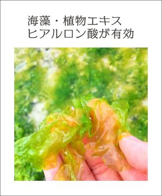混合肌に効果的なのは、海藻・植物エキス、ヒアルロン酸