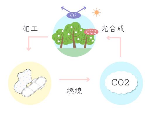 環境循環の仕組み