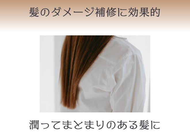 ヒマワリオイルは、髪のパサつき・うねりを抑える