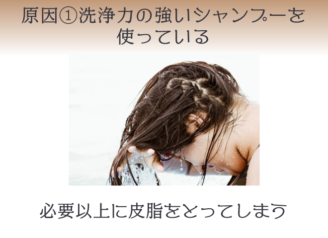洗浄力が強いシャンプーは、頭皮から必要以上に皮脂を取ってしまいターンオーバーが乱れてしまう