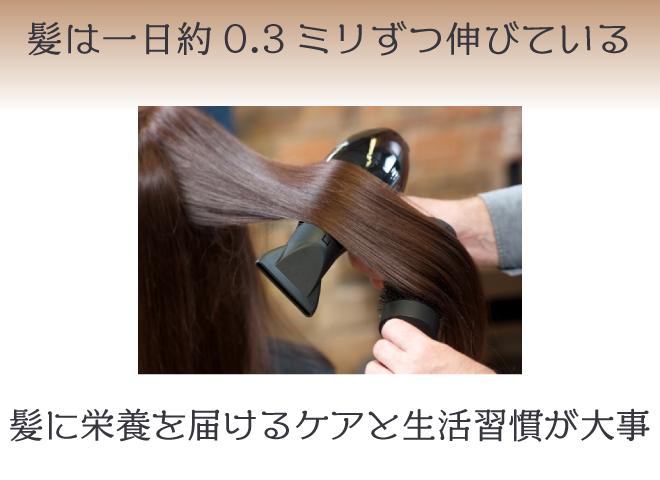 髪の成長スピードを速めることは難しい