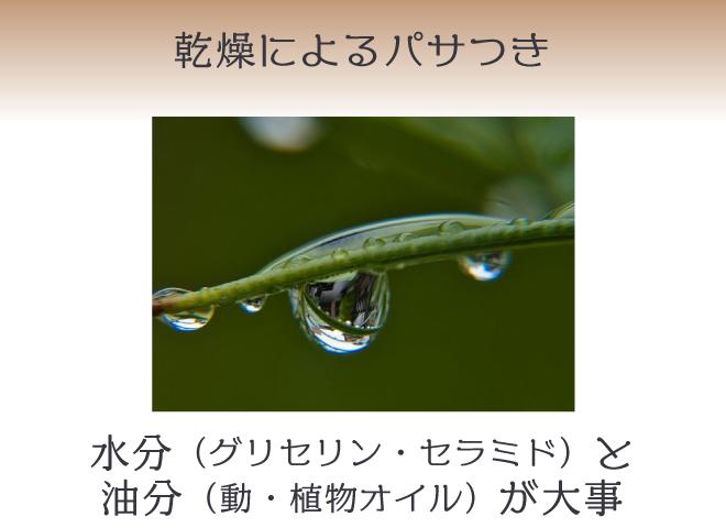 乾燥ダメージは水分と油分が大事