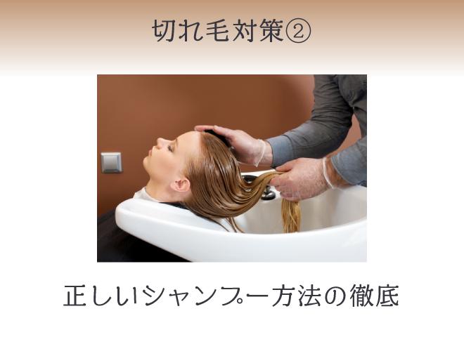 切れ毛改善②シャンプー前後の予洗いとブラッシングを欠かさず行う