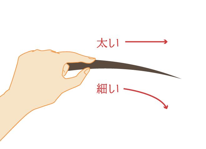 髪の毛の太さをセルフチェック!1本0.5~0.7mm程度なら細くて柔らかい髪質の分類。