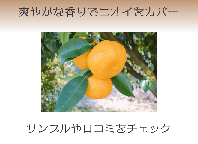 柑橘系は嫌な臭いを爽やかにカバーする