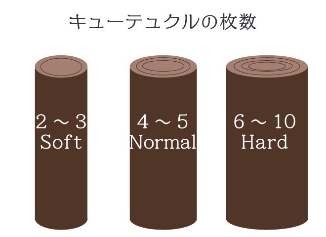 キューテュクルの枚数と髪の硬さの関係