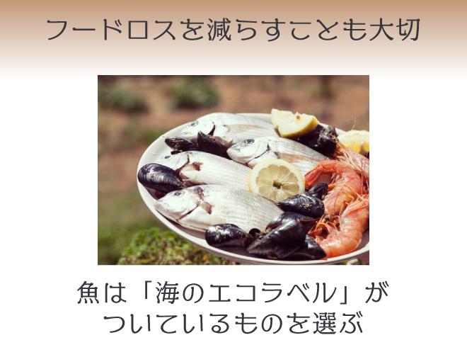 私たちにできるサスティナブル②食材は地産地消、鮮魚は「海のエコラベル」記載のものを